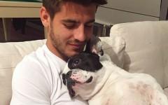 Alvaro Morata e il suo cane Bo: amore e sport