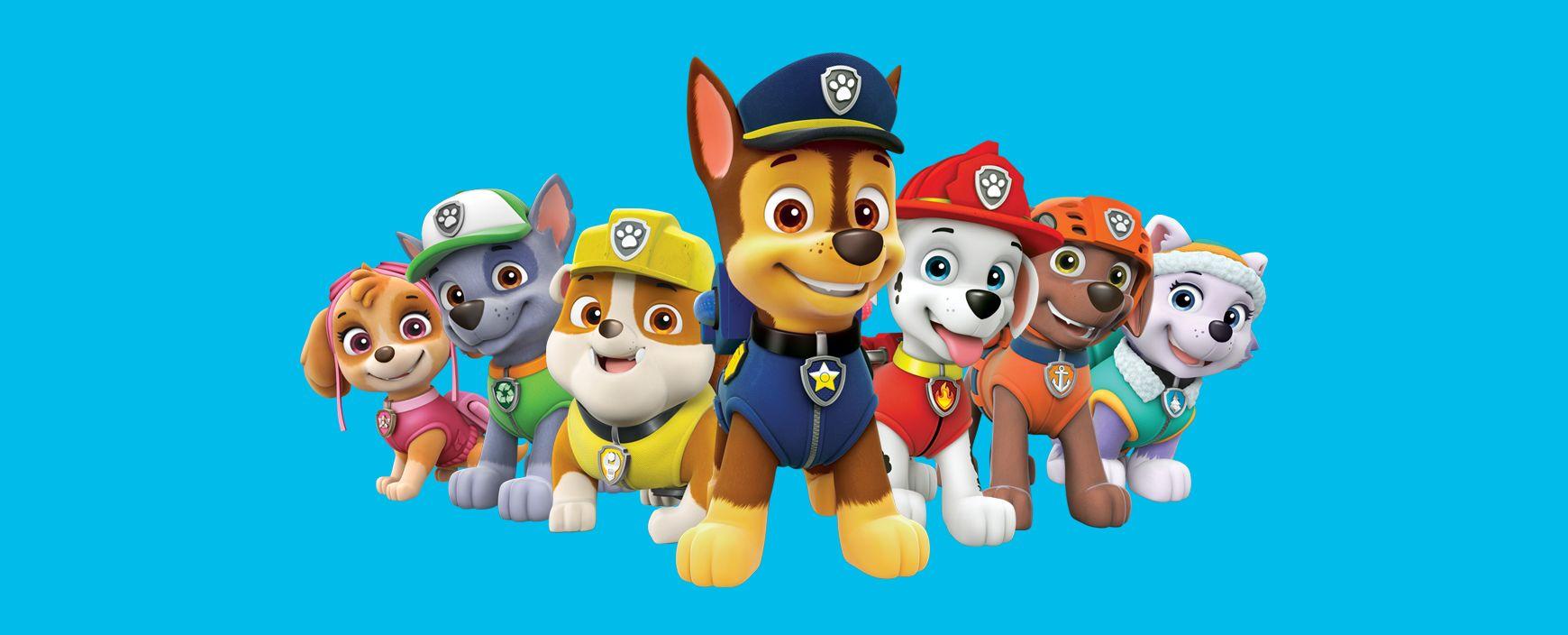 Che cani sono i paw patrol cuccioli di razze diverse