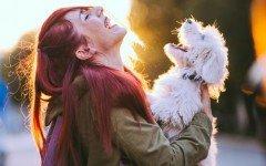 Confirmado: Los humanos y perros compartimos genes
