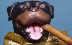 Triumph, the Insult Comic Dog is a puppet dog voiced and puppeteered by Robert Smigel. The character´s type of comedy is insulting, mostly of celebrities.