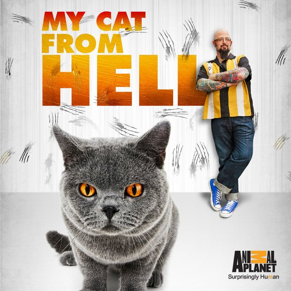 My Cat from Hell: