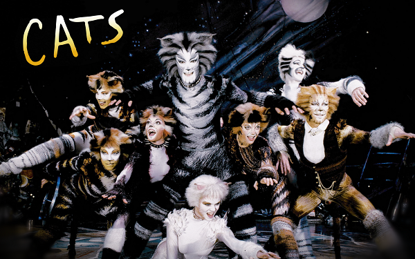 Cats the Musical Cats musical