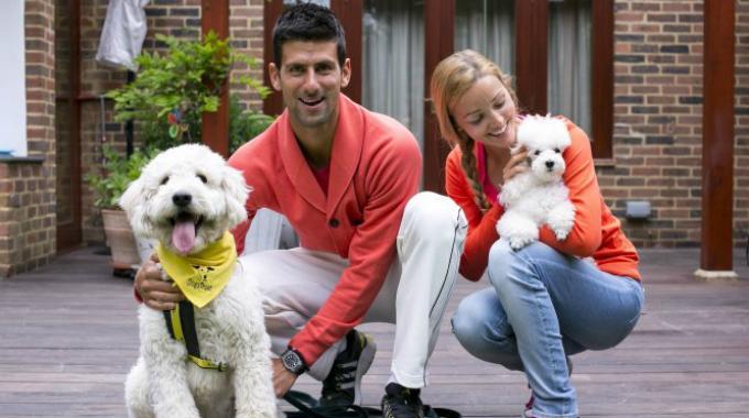 Novak Djokovic e l'amore per il suo cane Pierre