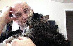 Ultimatum della fidanzata: scegli tra me e il gatto