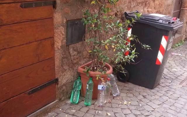 Le bottiglie d'acqua per impedire a cane e gatto di sporcare