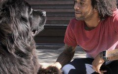 Marcelo un folle amante degli animali e dei suoi cani