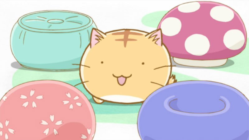 Anime Cat: Top 8 Cute Anime Cats