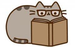 cat pusheen