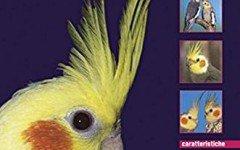 Calopsitte: la recensione del libro di Pierre Fusy-lacroix
