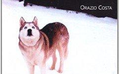 comportamento del cane e principali anomalie comportamentali