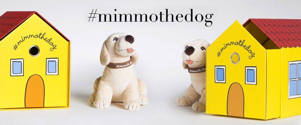 mimmo the dog Dolce&Gabbana