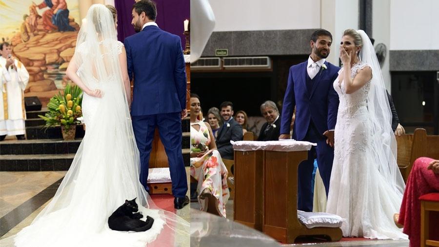 Al Matrimonio In Nero : Un gatto nero si sdraia sull abito della sposa dogalize