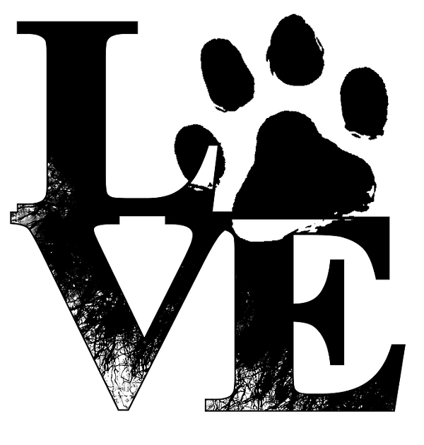 Dog Paw Print on Stickers, Tattoos, and everywhere