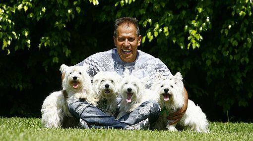 Raza del perro de Raúl Romero: un peligroso canino