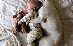 Bambini e animali nel lettone: i pro e i contro
