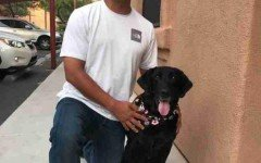 David e Kash: soldato e cane si riuniscono dopo 6 anni