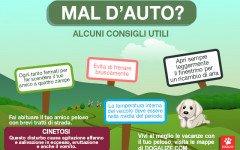 Infografica: il cane soffre il mal d' auto? Ecco cosa fare