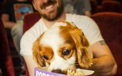 Cane al cinema: a Londra aperto cinema dogfriendly