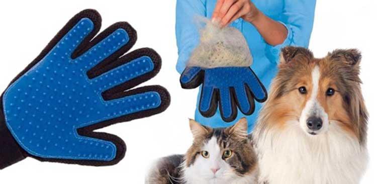 Spazzolare cane e spazzolare gatto: il nuovo guanto magico he rimuove peli per cani e rimuove peli per gatto