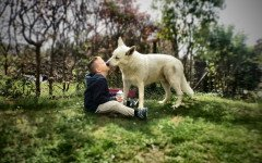 I baci del cane sono pericolosi? Cosa dice la scienza?