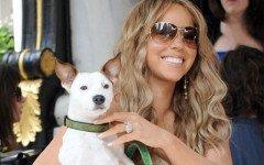 Mariah Carey e i suoi 8 Jack Russell: amore unico