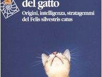 Il carattere del gatto: un mondo misterioso