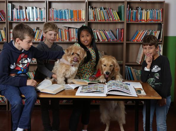 cani e bambini