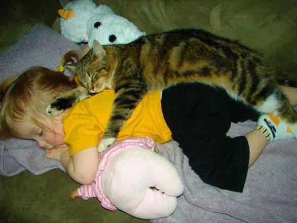 06_gatto_dorme_su_una_bambina