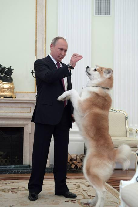 Putin e Yume
