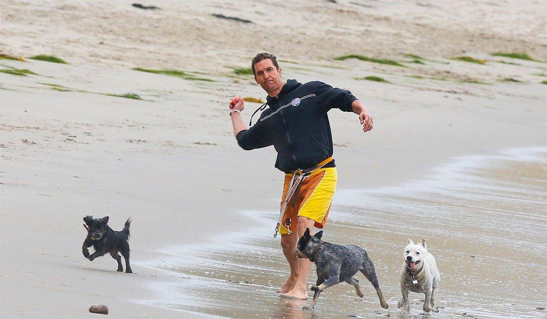 Matthew McConaughey: un gran amante de los perros