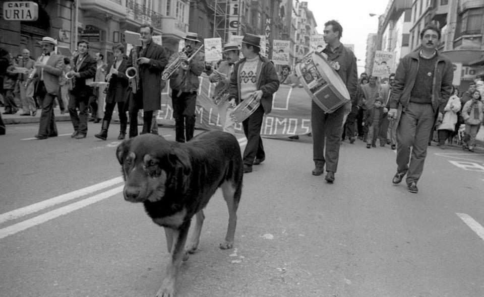 Rufo el perro de Oviedo: un amado canino