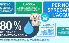 Infografica: i consigli per non sprecare acqua