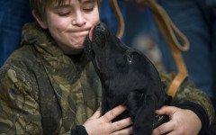 Se il cane ti lecca è pericoloso? Perché lo fa?