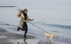 I 5 consigli per dimagrire con il proprio animale