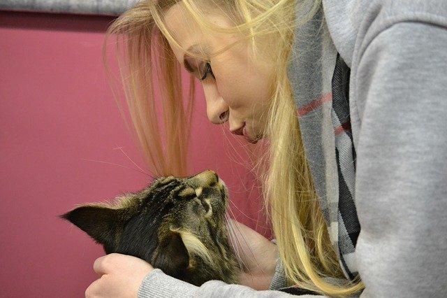 gatto e ragazza