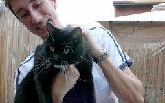 gatto salva soldato