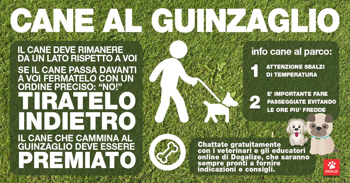 Infografica: portare il cane al guinzaglio