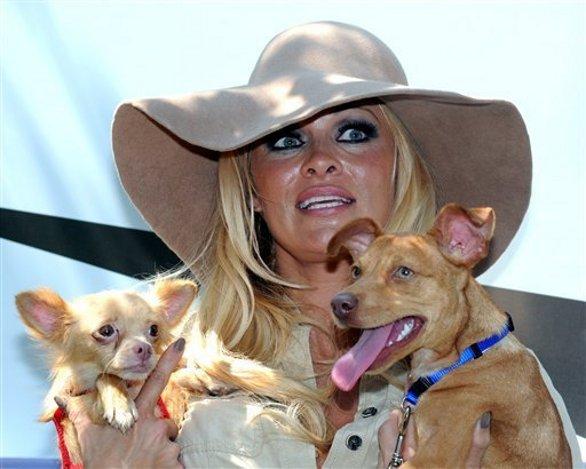 Pamela Anderson sempre dalla parte degli animali
