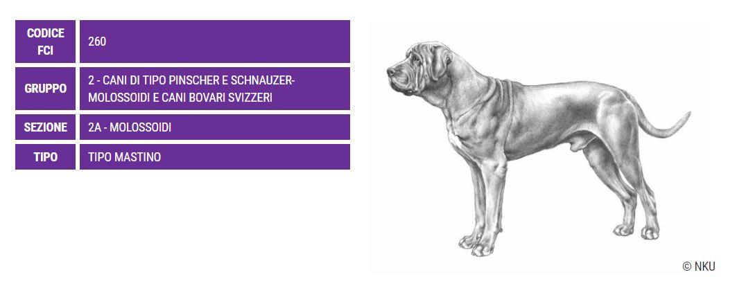 Tosa, carattere e caratteristiche - Razze Cani