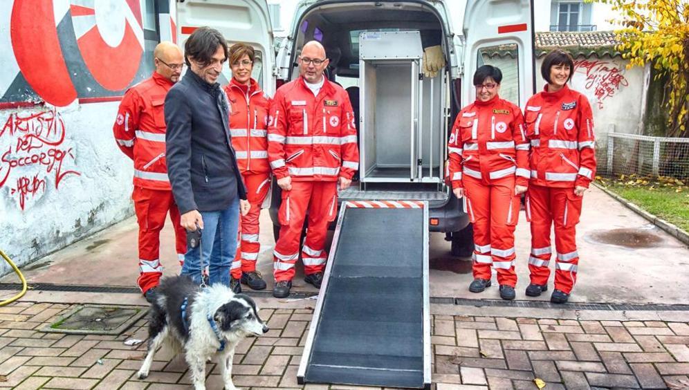 Ambulanza per animali: il primo servizio di soccorso a 4 zampe