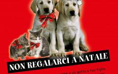 Animali non sono giocattoli: campagna del Fondo Amici di Paco