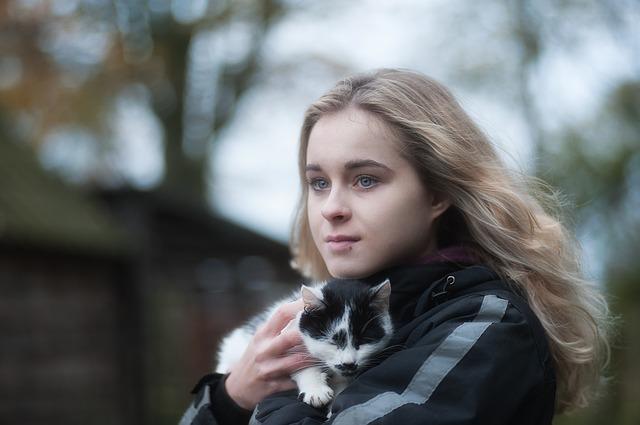 Socializzare con gatto adottato: trucchi e consigli