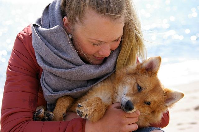 Si amano più i cani degli esseri umani? Secondo uno studio sì!