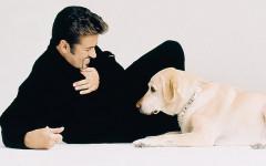 George Micheal e la lotta per gli animali