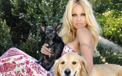Pamela Anderson, a Passionate Animal Rights Activist