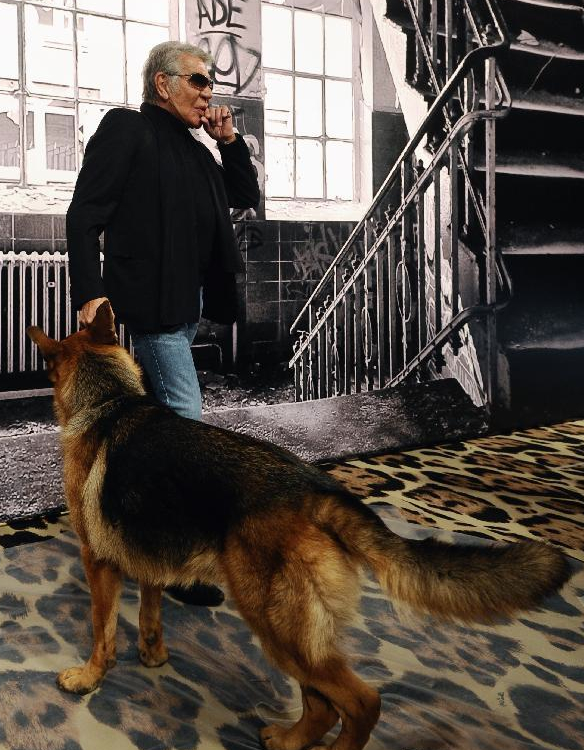 Roberto Cavalli and His Exclusive Line for Dogs