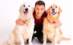 Alexis Sanchez and his passion for his two dogs