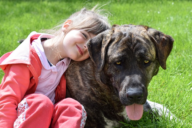 Coinvolgere i bambini nella cura del cane: come fare?