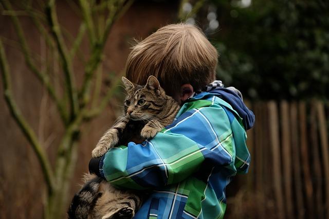 Animali riducono lo stress nei bambini