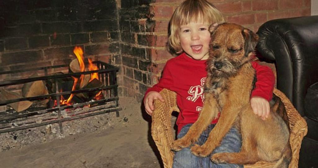 Cane Morse torna a casa dal piccolo Edward